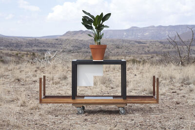 Florian Slotawa, 'Local Plants (Strelitzia)', 2012