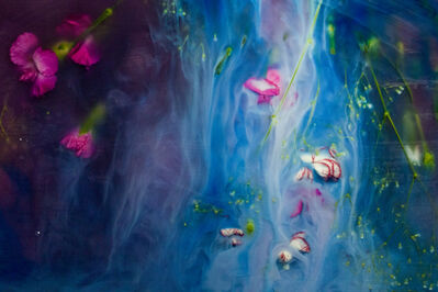 Ashley G. Garner, 'Blue Experiment', 2016-2017 Edition