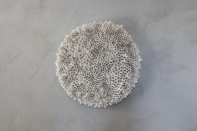 Valeria Nascimento, 'Coral', 2017