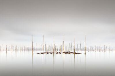 Michael Levin, 'Twilight', 2014