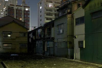 Nobuhiro Fukui, 'crustal cluster - 01', 2005