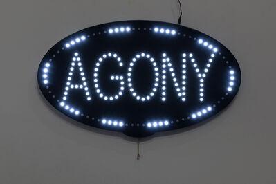Heidi Schwegler, 'Agony', 2018
