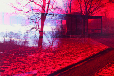 James Welling, '8067', 2008