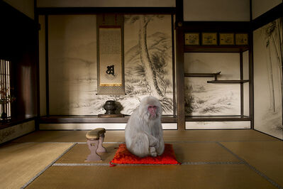 Karen Knorr, 'Awakened to Emptiness, Hosen-in Temple. Ohara', 2015