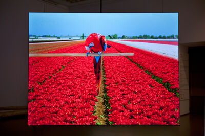 Marijke van Warmerdam, 'Rrrolle - red, 35 mm film loop', 2011