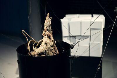 Dmitry Kawarga, 'Object-antiobject. Superposition', 2014