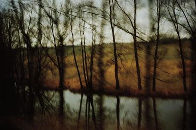 Nan Goldin, 'Trees by the River, Munich', 1994