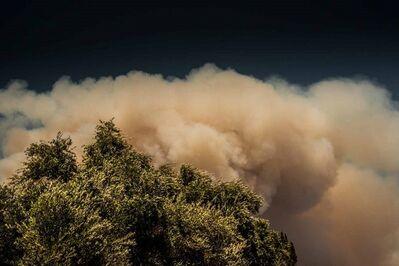 Robert Welkie, 'Fire in Monrovia, Tree California', 2016