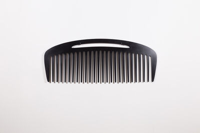 Lois Andison, 'Comb', 2014