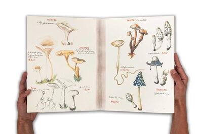 Annette Messager, 'Ma collection de champignons bons et champignons mortels ', 1973-2011