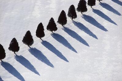 Alex Maclean, 'Tree Shadows in Snow'