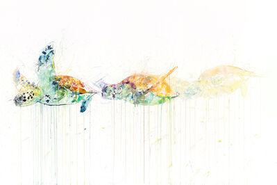 Dave White, 'Sea Turtle Movement'