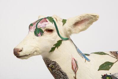 Chris Roberts-Antieau, 'Albino Deer', 2017