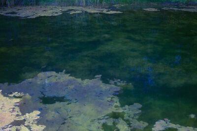 Erik Madigan Heck, 'A Return to Giverny', 2011