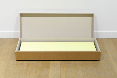 Elodie Seguin, 'Peinture écrin, jaune éblouissant', 2015