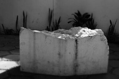 Fritzia Irizar, 'Untitled (Vestigie)', 2012