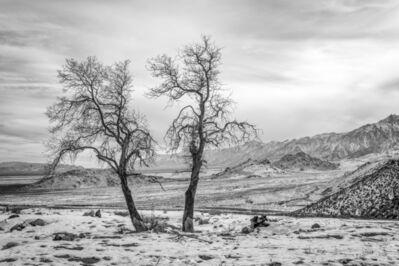 Keith Skelton, 'Eastern Sierras CA. 2012', 2012
