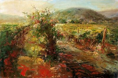 Stephen Shortridge, 'STREAMING LIGHT, YOUNTVILLE NAPA', UNKNOWN
