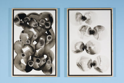 Bhakti Baxter, 'Kissing Donuts (diptych)', 2015-2016