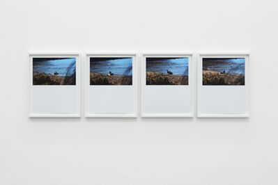 Daniel Gustav Cramer, 'Tales 27 (Jackson's Bay, South Island, New Zealand, May 2011)', 2020