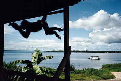 Alex Webb, 'Tefé, Brazil', 1993