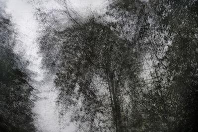 Eric Bourret, 'Walk - Landscape14 - Zhangjiajie, Chine 1', 2018