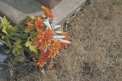 Chelsea Darter, 'Carnations   ', 2018