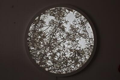 Zhai Xuanhong 翟轩弘, 'Landscape 13', 2019