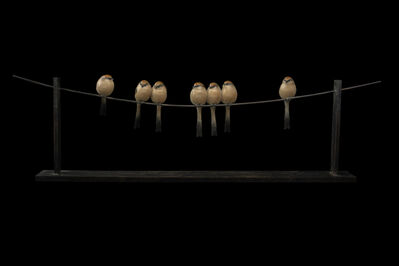 Adam Binder, '7 Long Tailed Tits', 2015