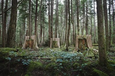 David Ellingsen, 'Installation 7: Untitled (3 Stumps) ', 2014
