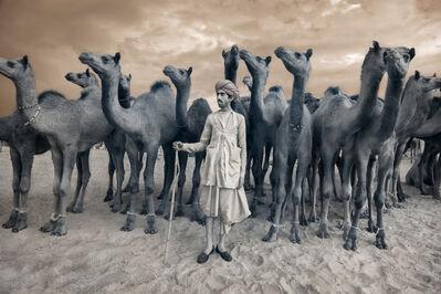 Nevada Wier, 'ndia. Rajasthan. Puskar Fair. Camel Trader. ', 2010