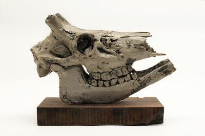 Malia Jensen, 'Deer Skull', 2018