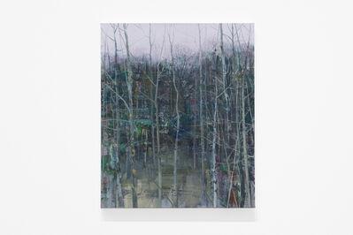 Tommy Hilding, 'Sly / Bushwood', 2019