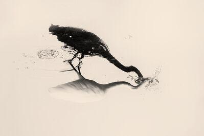 Albarrán Cabrera, 'The Mouth of Krishna', 2018