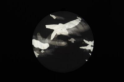Jane Lee, 'FREE BIRDS', 2015
