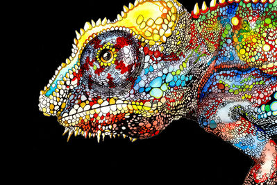 Clara Bacou, 'Chameleon ', 2014