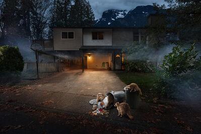 Kevin Lanthier, 'Trash Pandas', 2020