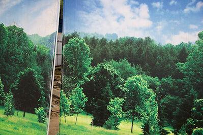 Lana Z Caplan, 'Tree-Lined', 2013