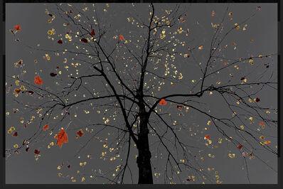 Arman, 'N°24, Dark Trees series (Ed. 1/3 + 1 AP)', 2018