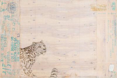 Joseph Rossano, 'EDNA: Panthera pardus orientalis (Amur Leopard)     ', 2015