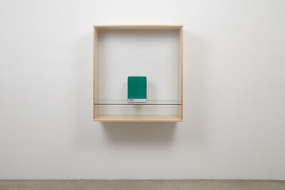 Haim Steinbach, 'Untitled (Pantone 17-5641)', 2016