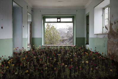 Gohar Dashti, 'Home 7', 2017