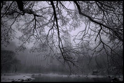 Michael Yamaoka, 'Snowstorm in Central Park', 2021
