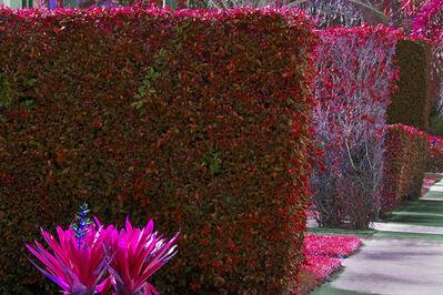 Robert Funk, 'Hedge Fun - How the Rich make Street Art - SoSo - WPB', 2020