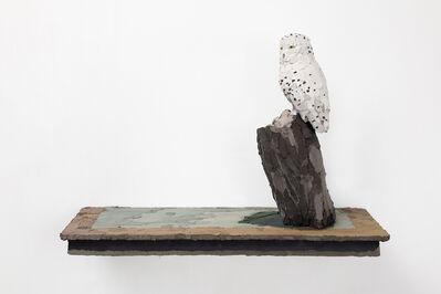 Vesa-Pekka Rannikko, 'Snowy Owl', 2021