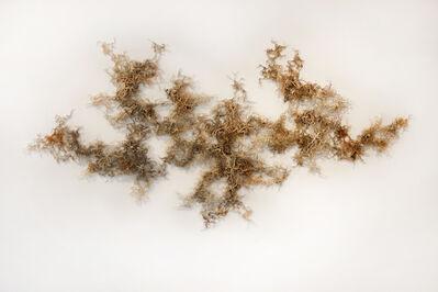 Jessica Drenk, 'Cerebral Mapping 6', 2013