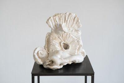 Adomas Danusevicius, 'Untitled (ceramic cycle)', 2018