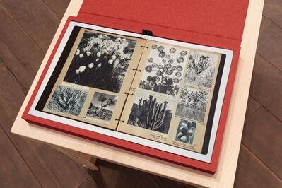 Mabe Bethônico, 'Livro Botanica (Botanica Book)', 2016