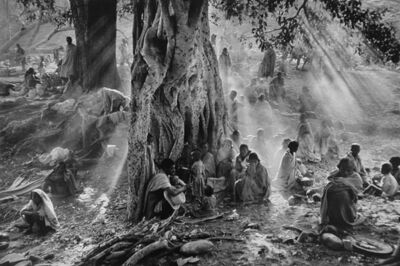 Sebastião Salgado, 'Refugees Hiding Under Trees to Avoid Government Airplane Surveillance, Tigray, Ethiopia', 1986