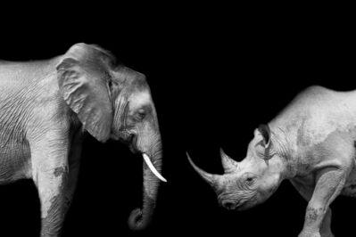 Marco Simoni, 'The Ivory Game', 2020
